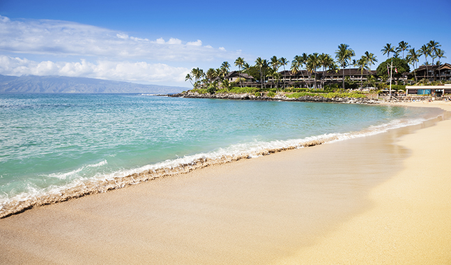 Dream Beach - Napili Bay - Maui Hawaii